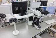 ディスカッション顕微鏡